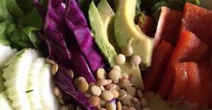 Casa Verde Retreat - Wendy Green - Yoga - Raw Food - Hiking and Nature - Mindo Ecuador - Raw Food