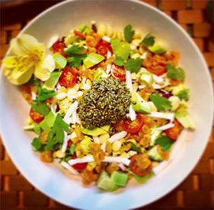 Casa Verde Raw Food Yoga Retreat - Wendy Green - Yoga - Raw Food - Hiking and Nature - Mindo Ecuador - Longevity
