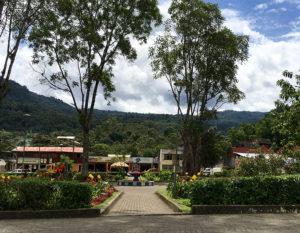 Casa Verde Raw Food Yoga Retreat - Wendy Green - Yoga - Raw Food - Hiking and Nature - Mindo Ecuador - Ashtanga